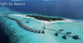 Cocoa Island*****