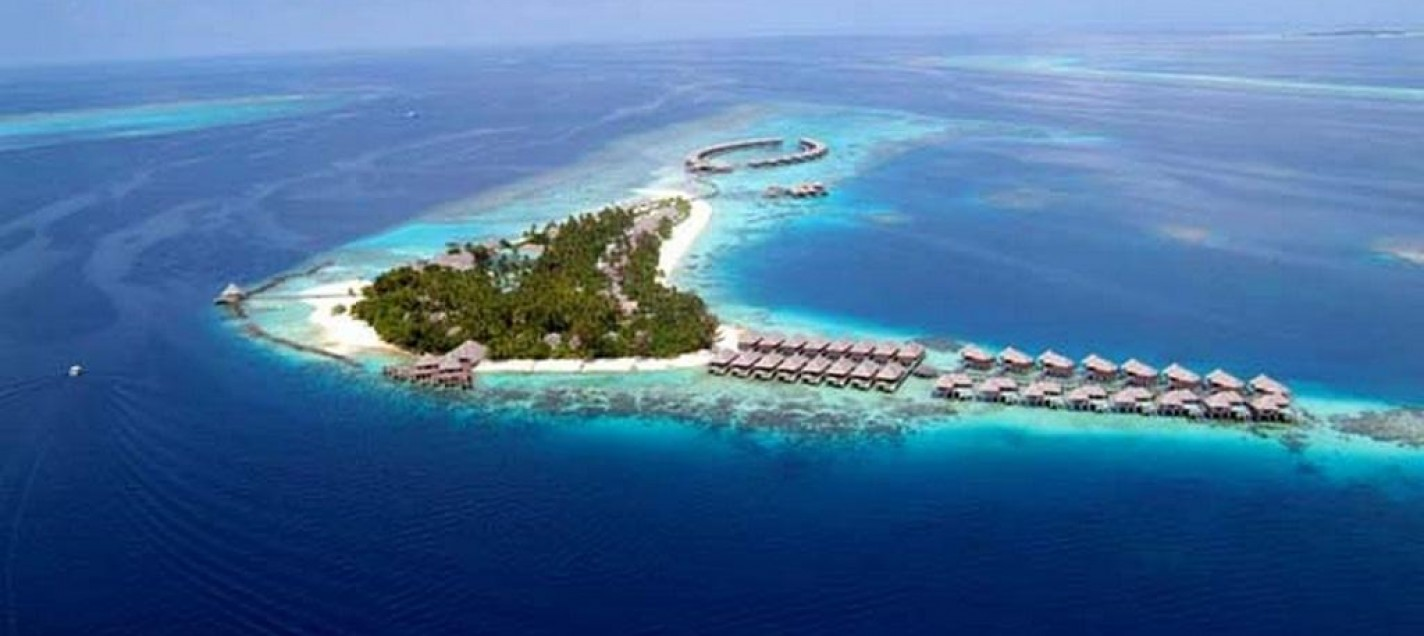 001_Coco_Palm_Bodu_Hithi